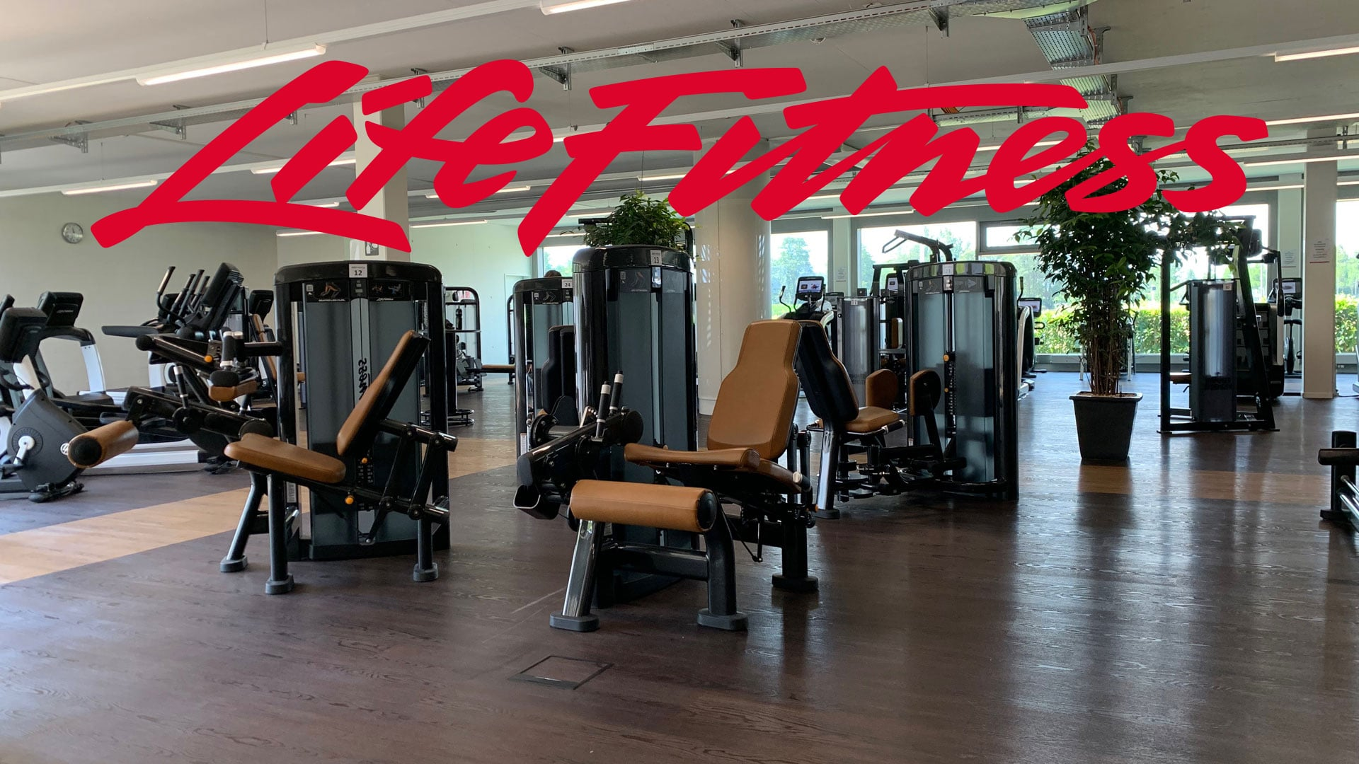 Kraft-Zone mit LifeFitness @ 4-Towers | BodyWorx